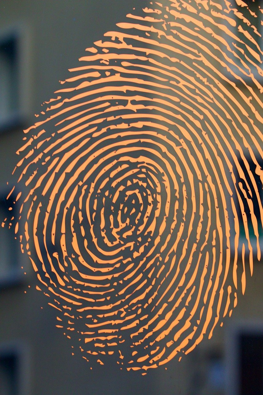 fingerprint, house, house facade